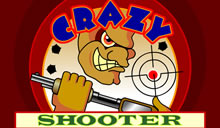 jeu Crazy Shooter